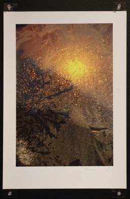4-winter-sun