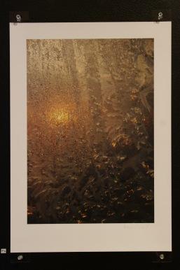 5-winter-sun
