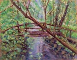 creek-in-forest-in-leeds