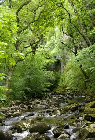 hidden-creek-wales