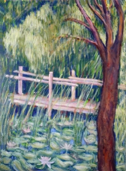 pond-in-mogo