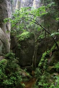 survival-rocks-in-north-bohemia