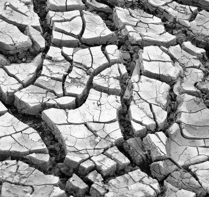 mlund-mono-dried-mud